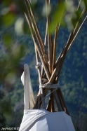 Bird nest in the teepee