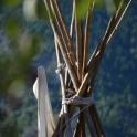 Bird nest in the teepee