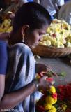 DSC_0012-bangalore flower market