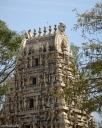 DSC_0079-Bangalore