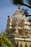 DSC_0080-Bangalore