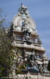 DSC_0100-Bangalore