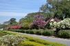 DSC_0108-Bangalore Lalbagh Botanical Gardens