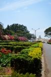 DSC_0111-Bangalore Lalbagh Botanical Gardens