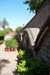 DSC_0216-Bal Samand Palace-veg garden and nursery tour