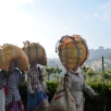 Tea pickers coming back from the fields