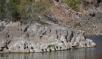 DSC_0866-Lake Lanisar