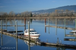 At the Pitt Meadows Marina