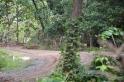 Road to Nosara
