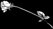 stem-clipart-black-and-white-4