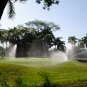 The golf course takes an exorbitant amount of water
