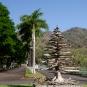 """Christmas tree"" and main road of Los Delfines"